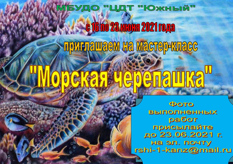 Мастер-класс «Морская черепашка»